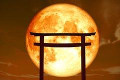 Schattenbild torii hölzerner japanischer Säulenstand über Seesonnenuntergang SK Lizenzfreie Stockfotografie