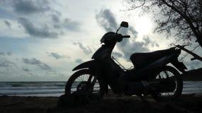 Schattenbild von Honda-Welle am Strand stock footage