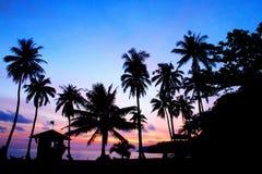 Schattenbild von Kokosnuss- und Palmen zur Sonnenaufgangzeit auf dem tropischen Strand Lizenzfreies Stockbild