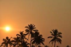 Schattenbild von Kokosnussbäumen während des Sonnenuntergangs Stockfoto