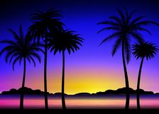 Schattenbild von Palmen auf tropischem Sonnenuntergang Stockfoto
