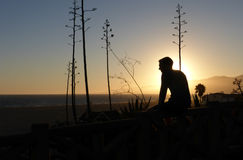 Schattenbild von Person Sitting auf Wand während des Sonnenuntergangs Lizenzfreie Stockfotos