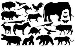 Schattenbild von verschiedenen Tieren stockbilder
