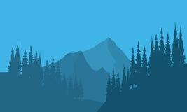 Schattenbild von Waldtannenbäumen und -berg Stockbild