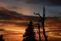 Schattenbild vor Sonnenuntergang lizenzfreie stockbilder