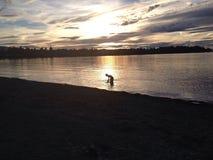 Schattenbild während des Sonnenuntergangs über Bucht Lizenzfreies Stockbild