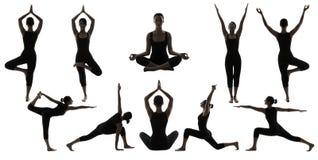 Schattenbild-Yoga-Haltungen auf Weiß, Frau Asana-Positions-Übung Stockbilder