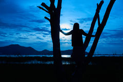 Schattenbildbild der Frau steht auf dem toten Baum Stockfoto