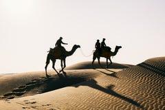 Schattenbilddromedar in der Thar-Wüste lizenzfreies stockbild