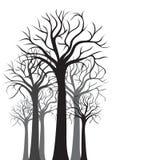 Schattenbilder der Bäume stock abbildung