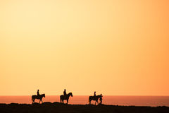 Schattenbilder der Pferdenmitfahrer Lizenzfreie Stockfotografie