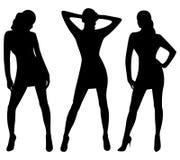 Schattenbilder der reizvollen Frauen Stockbild