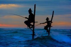Schattenbilder der traditionellen Stelzenfischer Sri Lankan Lizenzfreies Stockbild