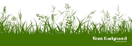 Schattenbilder des grünen Grases, der Spitzen und der Kräuter Nahtloser Rand lizenzfreie abbildung