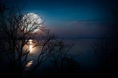 Schattenbilder des Holzes und des schönen Moonrise, heller Vollmond wo Lizenzfreie Stockfotografie