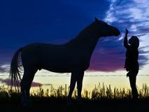 Schattenbilder des Pferds und der Frau auf einem Hintergrund von blauen Wolken am Abend Stockfotos