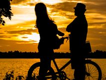Schattenbilder einer glücklichen Familie mit Hunden und ihren Fahrrädern Am Th Stockbilder