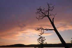 Schattenbilder am Sonnenuntergang Stockfotos