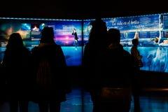 Schattenbilder von den Leuten, die entlang anstarren Lizenzfreie Stockfotografie