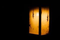 Schattenbilder von geckoes im gelben Licht einer Papierfackel in Asien Der Gecko ist ein Schatten Stockbilder