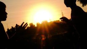 Schattenbilder von Jungen, rüttelnd auf einem Training gegen den Sonnenuntergang stock footage