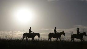 Schattenbilder von Leuten auf Pferden stock video
