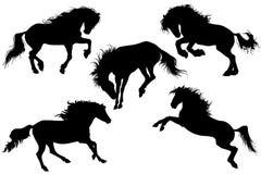 Schattenbilder von Pferdevektorillustration 2 Stockbild