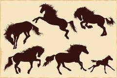 Schattenbilder von Pferdevektorillustration 1 Stockfotografie
