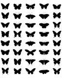 Schattenbilder von Schmetterlingen Stockbilder