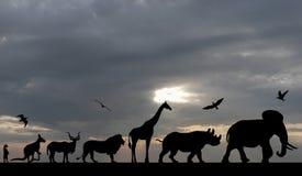 Schattenbilder von Tieren auf blauem bewölktem Sonnenuntergang Lizenzfreies Stockfoto