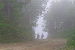Schattenbilder von zwei Leuten in einem Nebel auf einem Waldweg Lizenzfreie Stockbilder