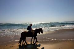 Schattenbilder von zwei Pferdenmitfahrern auf Strand Stockfotografie