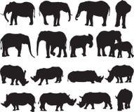 Schattenbildkontur des afrikanischen Elefanten und des weißen Nashorns lizenzfreies stockfoto