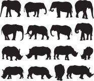 Schattenbildkontur des afrikanischen Elefanten und des weißen Nashorns lizenzfreie stockfotografie