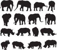 Schattenbildkontur des afrikanischen Elefanten und des weißen Nashorns stockfoto