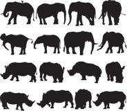Schattenbildkontur des afrikanischen Elefanten und des weißen Nashorns stockbild