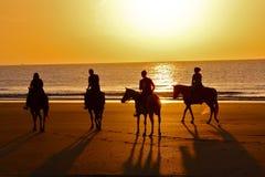Schattenbildpferdefahrt auf Strand an der Dämmerung lizenzfreies stockfoto