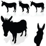 Schattenbildvektor der Eselschwarzen kunst Lizenzfreie Stockfotografie