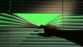 Schattenfälle auf den Jalousie, wenn eine Person sie senkt Grüner Bildschirm stock video