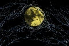 Schattenhexe über Mond stock abbildung