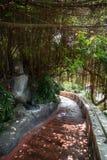 Schattiertes Treppenhaus am goldenen Berg in Bangkok lizenzfreie stockfotos