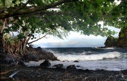 Schattiger hawaiischer Strand Lizenzfreies Stockfoto