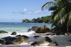 Schattiger Platz unter Palmen an Galan Vallon Strand, Seychellen Stockfotos