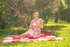 Schatz genießt bezauberndes Pinupmädchen in einem Sommerkleid auf einer karierten Decke im Park nahe den Büschen der Flieder das  lizenzfreie stockfotos