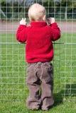Schauen durch den Zaun Lizenzfreie Stockbilder