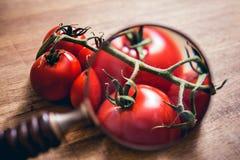 Schauen durch eine Lupe auf einem Stiel von Tomaten auf einem Holztisch lizenzfreie stockfotos