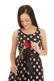 Schauen hinunter Blumentupfen lizenzfreie stockfotografie