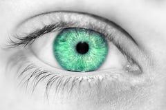 Schauen Sie Augenjungen Lizenzfreies Stockbild