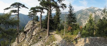 Schauen Sie vom Felsen über Hollental zu Schneeberg Stockbild