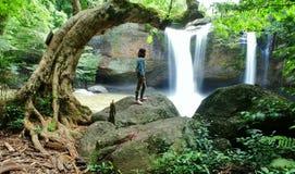 Schauen Sie Wasserfall Stockbild